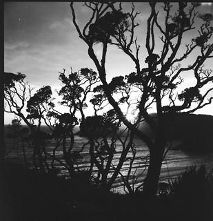 Sunrise on ANZAC day