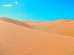 grassland(0.0), erg(1.0), sand(1.0), aeolian landform(1.0), natural environment(1.0), desert(1.0), dune(1.0), landscape(1.0), singing sand(1.0),