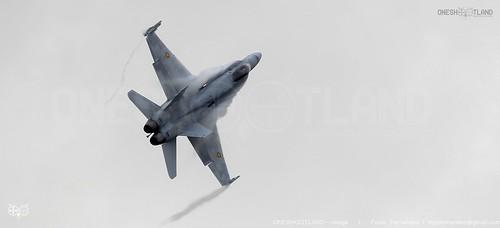 McDonnell Douglas EF-18 Hornet - Ejército del Aire de España