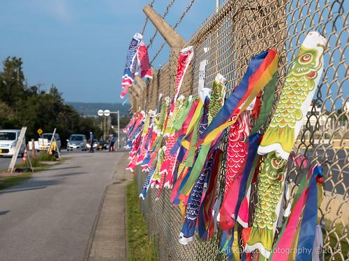 奥ヤンバル鯉のぼり祭り-95