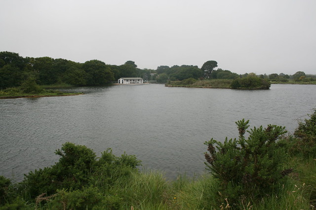 Eight Acre Pond, Pennington Marshes
