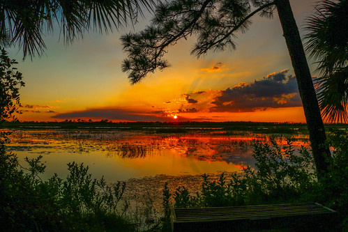 sunset sky usa sun nature clouds landscape florida cloudy marsh jensenbeach