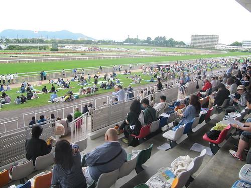 函館競馬場の一般席