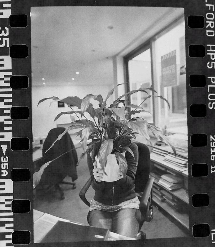 106 plant love