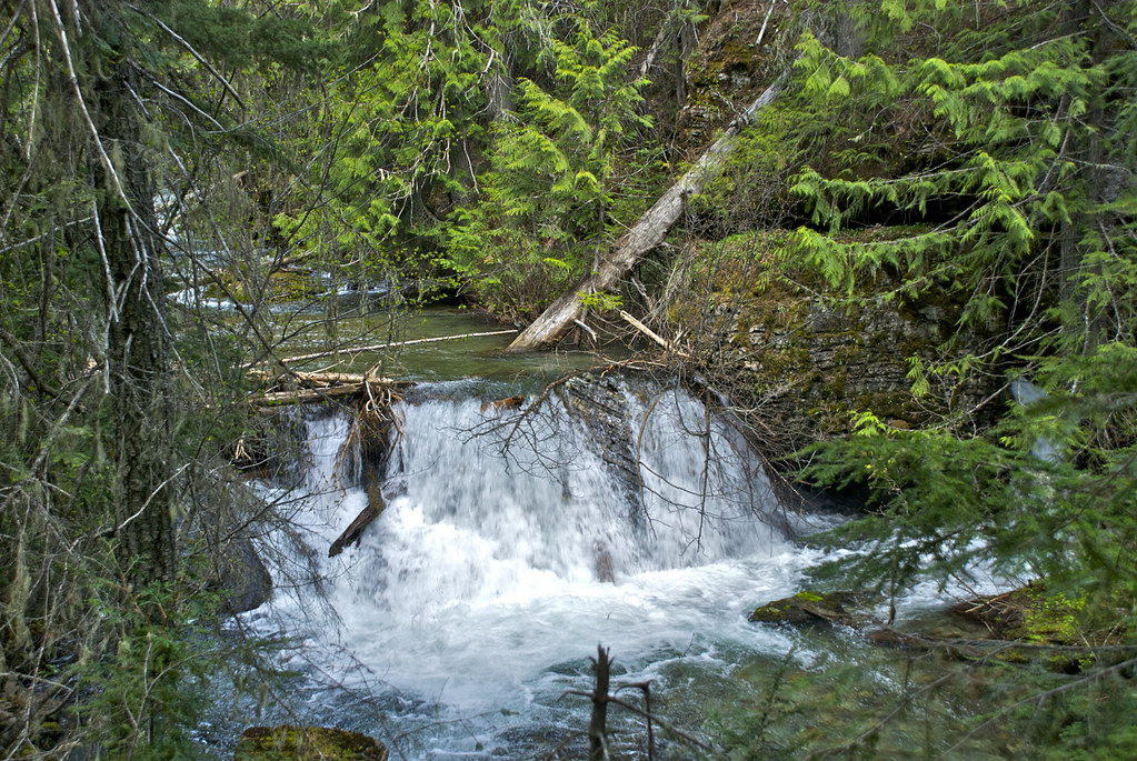 West Fork of Thompson River