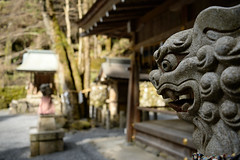 20150306 Kyoto 8