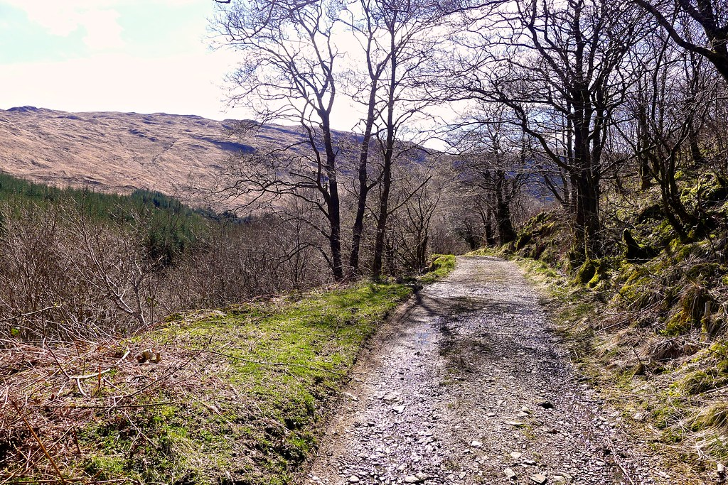 The track through Glen Fyne