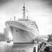 SS Rotterdam by DC P