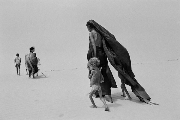 Sebastião Salgado's hauntingly beautiful photos get in-depth treatment in THE SALT OF THE EARTH.