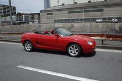 R0325285.JPG