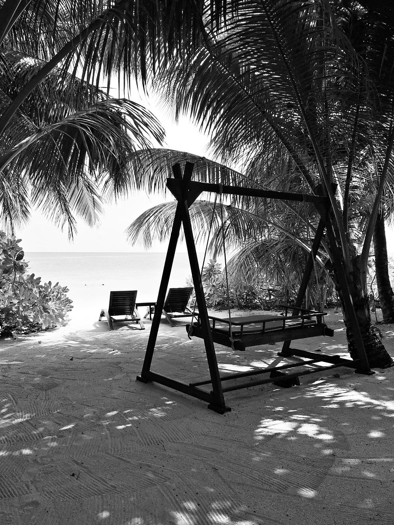 Maldives Photo Diary The Little Magpie 68 (2)