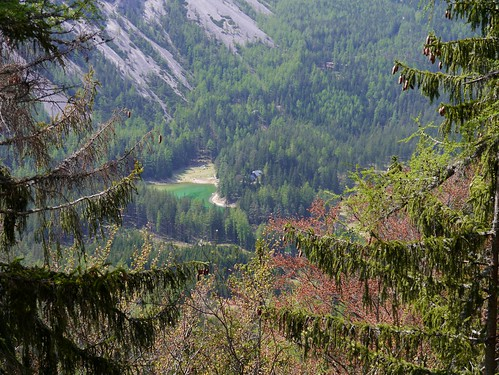 trees lake alps austria see österreich alpen bäume steiermark autriche styria hochschwab grünersee tragös oberort kamplriedel kamplsteig wanderung20160507