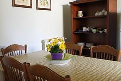 Cucina e gazebo esterno cucina