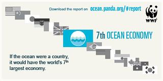 若把海洋視為一個經濟體,將排名世界第七。(來源:WWF)