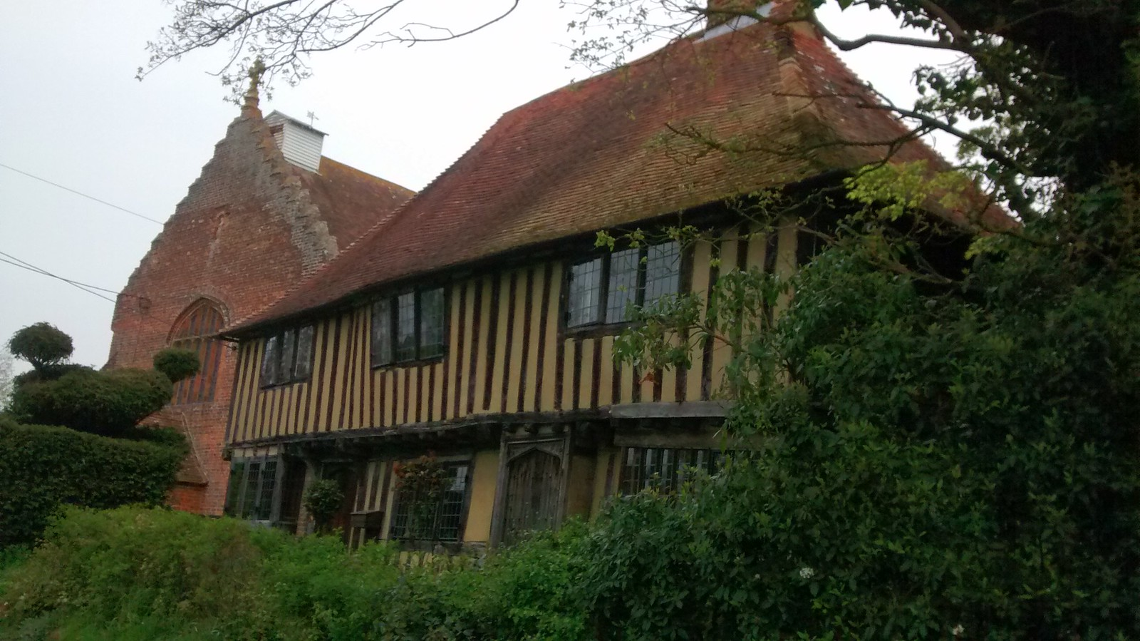 Hedge monster confronts 500 year old house Garden shed spotted on local Chapel