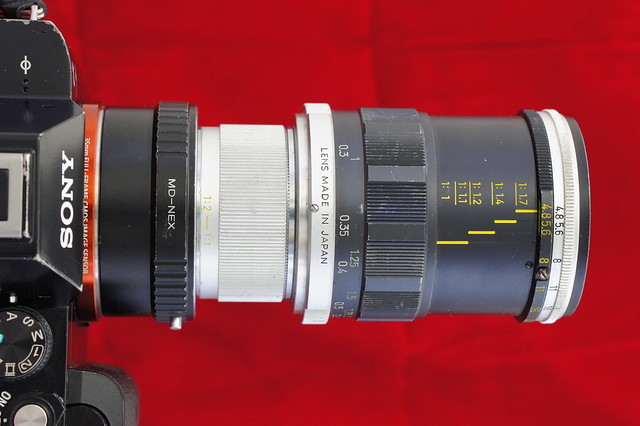 α7_MINOLTA MACRO ROKKOR-QF 50mm F3.5 2