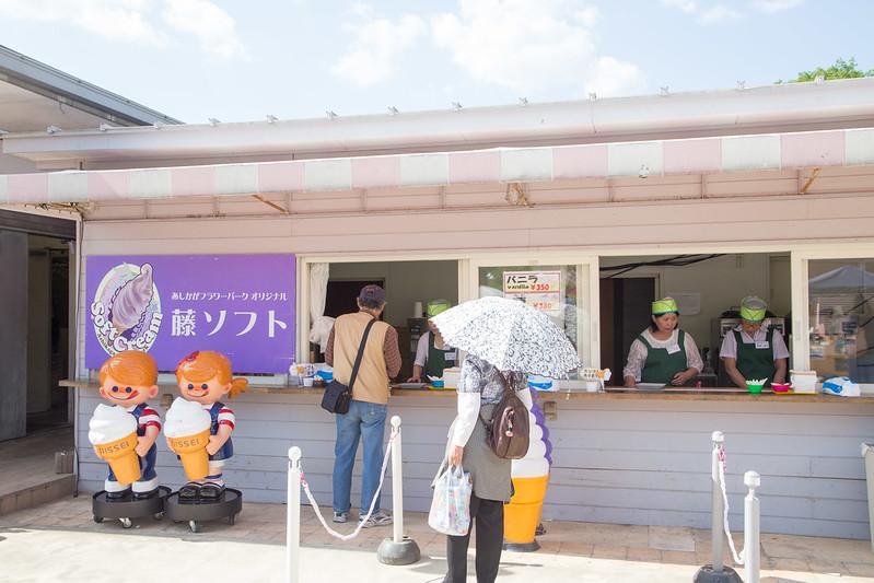 ashikaga_flowerpark-33
