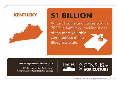 Kentucky State Infographic
