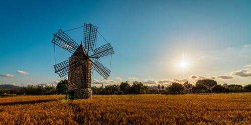 world travel light vacation sky cloud sun holiday mill nature windmill beautiful field clouds zeiss canon landscape gold golden nice spain view wind viento clear molino espana spanish hour 5d es typical spanien ze illesbalears montuïri 5ds distagont distagont2815 5dsr