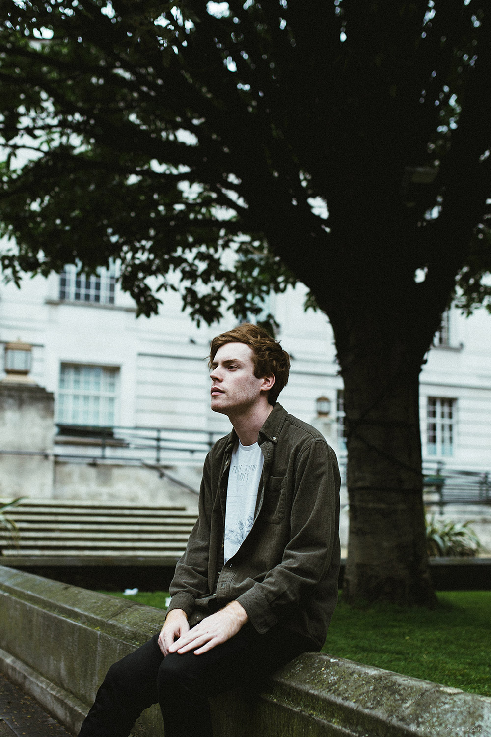 BTS: Wild Nothing