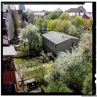 Stötteritz im Frühling