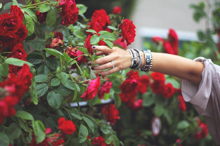 POSE-stop-roses-5