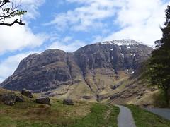 Scotland-V