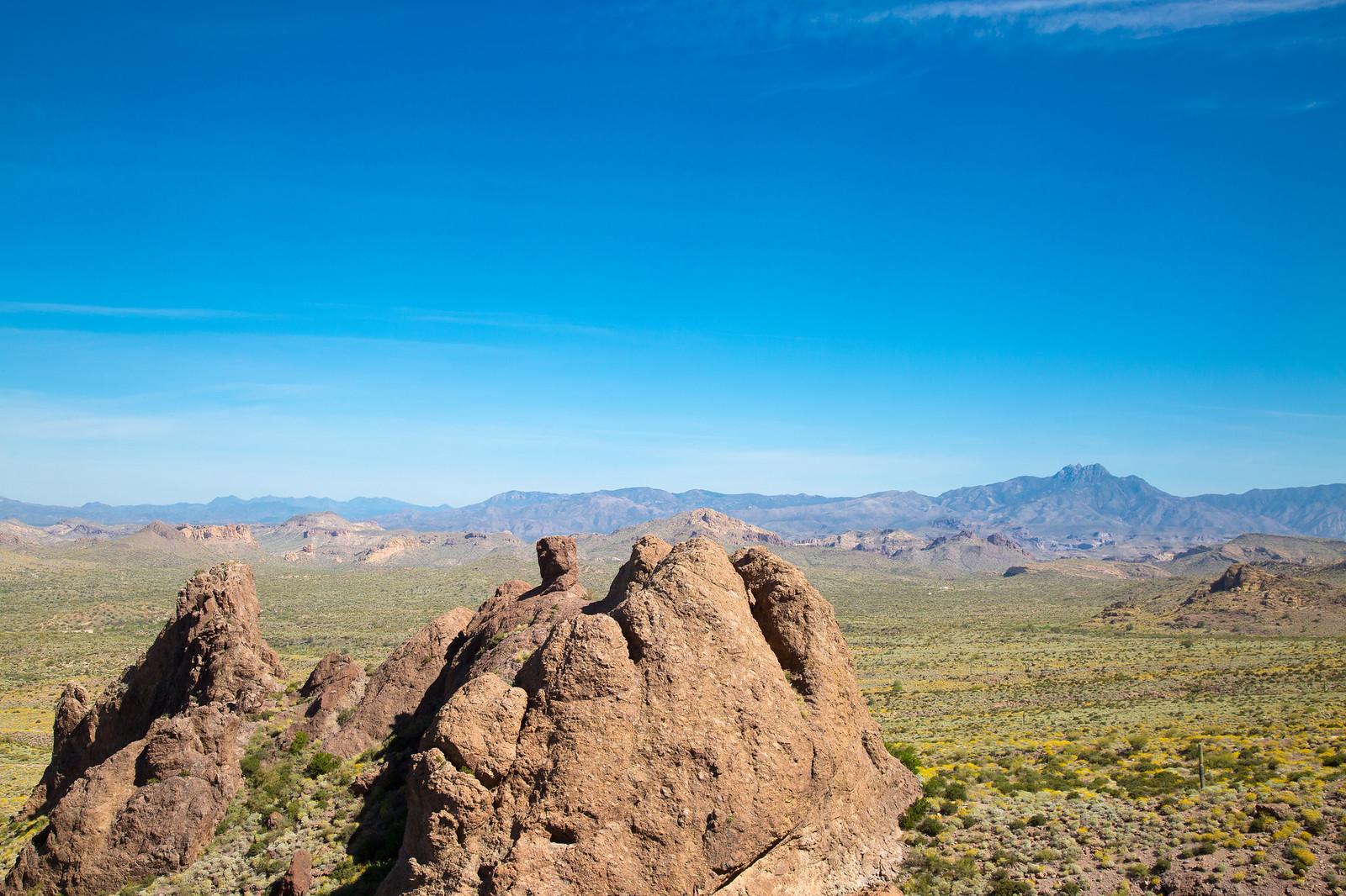 2015-03-12 Arizona-6431.jpg