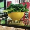 Il raccolto di oggi 1: bietole e spinaci #ortoinvaso #ortosulbalcone