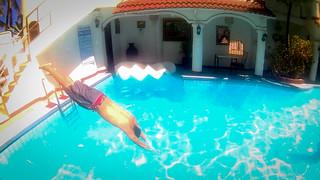 Nikko Diving