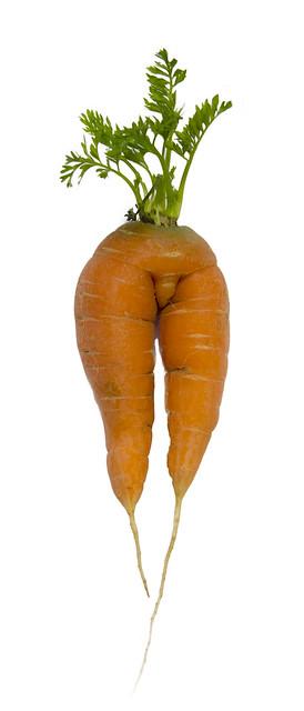 IMG_1852 Carrot