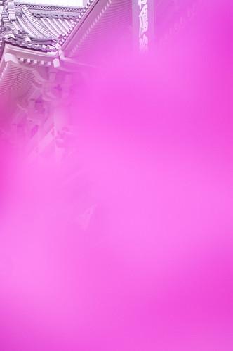 ケヤキの根方に咲いてたツツジで前ボケしてみた。歌舞伎座。