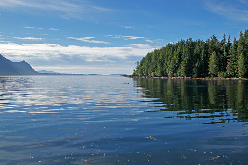 Brooks Peninsula, Northern Vancouver Island, British Columbia. Photo: Santa Brussouw.