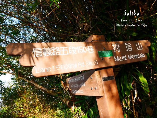 台北登山爬山象山步道 (17)