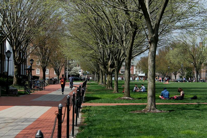 University falls in national rankings, again