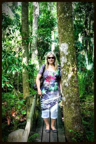 park usa outdoors florida hiking trail northamerica highlandshammockstatepark hickorytrail highlandscounty