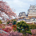 Himeji Castle (姫路城) in Spring by どこでもいっしょ