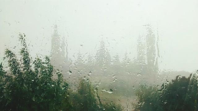 Días lluviosos devuelven ecos de otros días lluviosos.