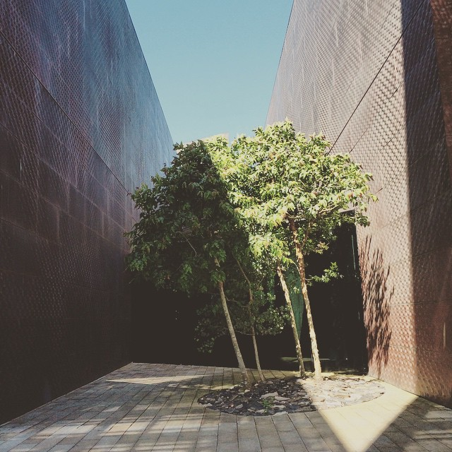Shadow play #deYoungmuseum #shadows #design #sanfrancisco #wanderentes #details #travelingjourno #karminatreeseries