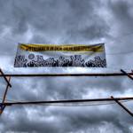 ScoutingDead Banner