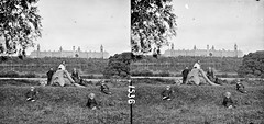 """""""Man and 5 children posed about felled tree in foreground.; in background extensive institutional building"""" is County Wexford Asylum"""