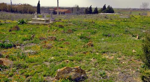 algérie cimetière tombes cimetières sétif sidizwaoui algérie2016