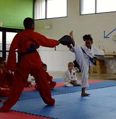 hapkido(1.0), individual sports(1.0), contact sport(1.0), sports(1.0), tang soo do(1.0), combat sport(1.0), martial arts(1.0), karate(1.0), taekkyeon(1.0), chinese martial arts(1.0),