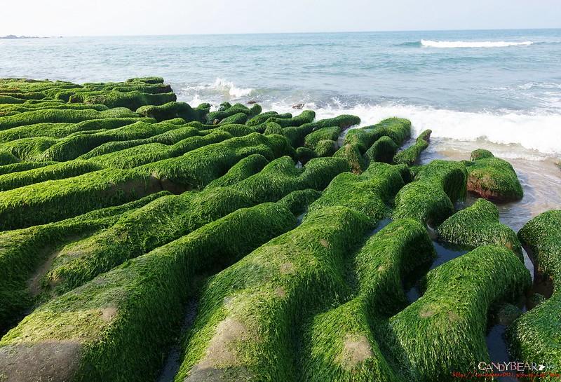 【台北(石門區)。遊】老梅綠石槽  北海岸的美麗無極限!!!(季節限定)