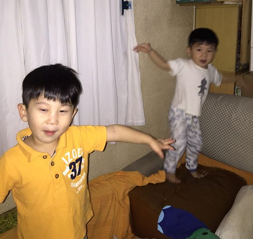 The boys, jumping around like monkeys in my mum's place while I was overseas.
