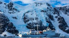 Home @ Penola Strait, Antarctica