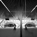 Parallel Gateway by Scott Baldock