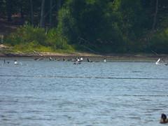 Hempstead Lake State Park (14)