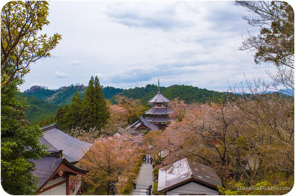 2015-04-12-20150412(Canon EOS 6D)-00067