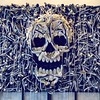 What's better than a skull made of Converse? by fluttography